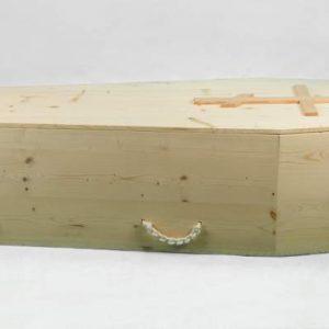 Economy Coffin